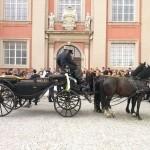 Hochzeitssängerin Wolfenbüttel